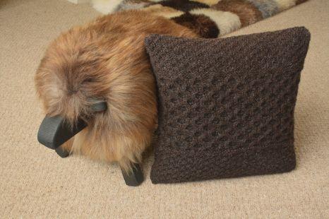 Coll cushion